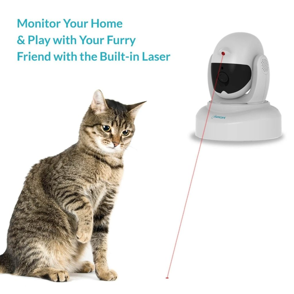 pet security camera with laser